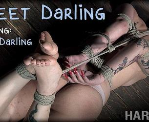 [HardTied.com] Rose Darling (Sweet Darling / 11.03.2020) [2020 g., BDSM, Humiliation, Torture, Whipping, 720p]
