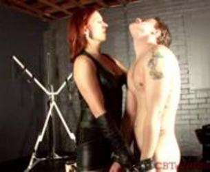 Cbt and ball busting a